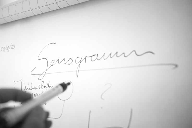 Genogrammarbeit | INQUA Institut